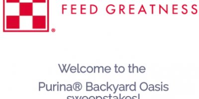 Win A 36k Backyard Makeover Sweep Geek